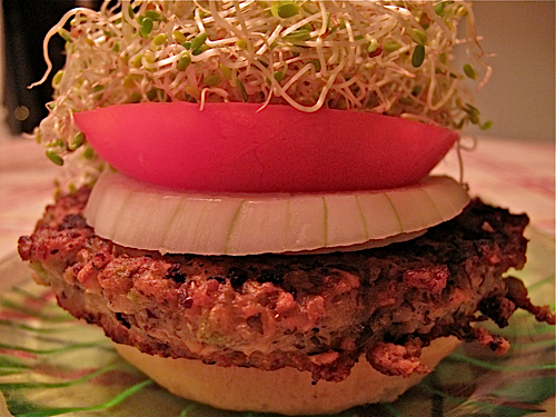 Sprouted Bean Burgers