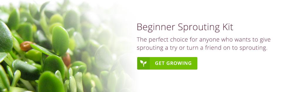 Beginner's Sprouting Kit
