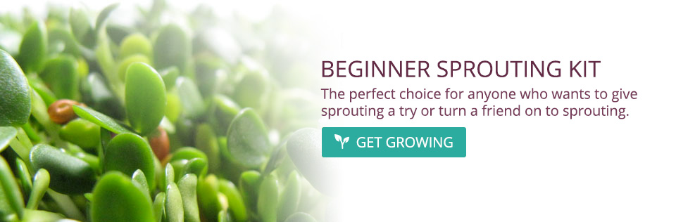Beginner's Sprouting Kit