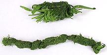 grass pulp comparison